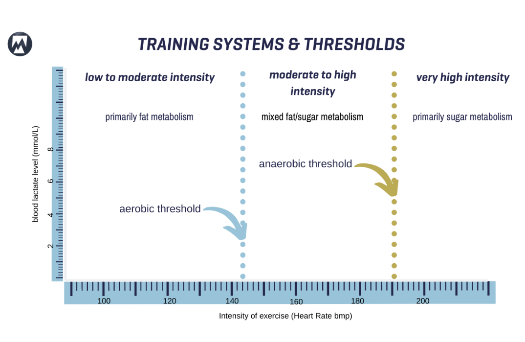 training systems